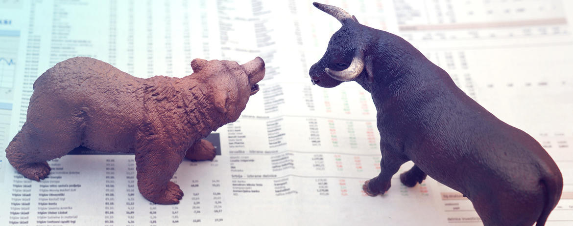 What's the Difference Between a Bear and Bull Market?