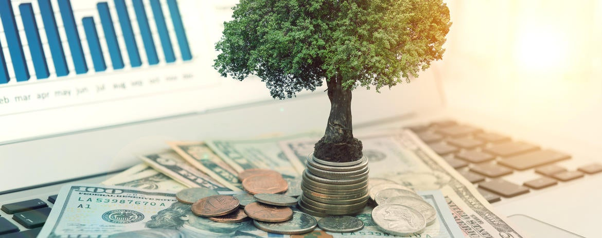 The Benefit of Reinvesting Your Dividends